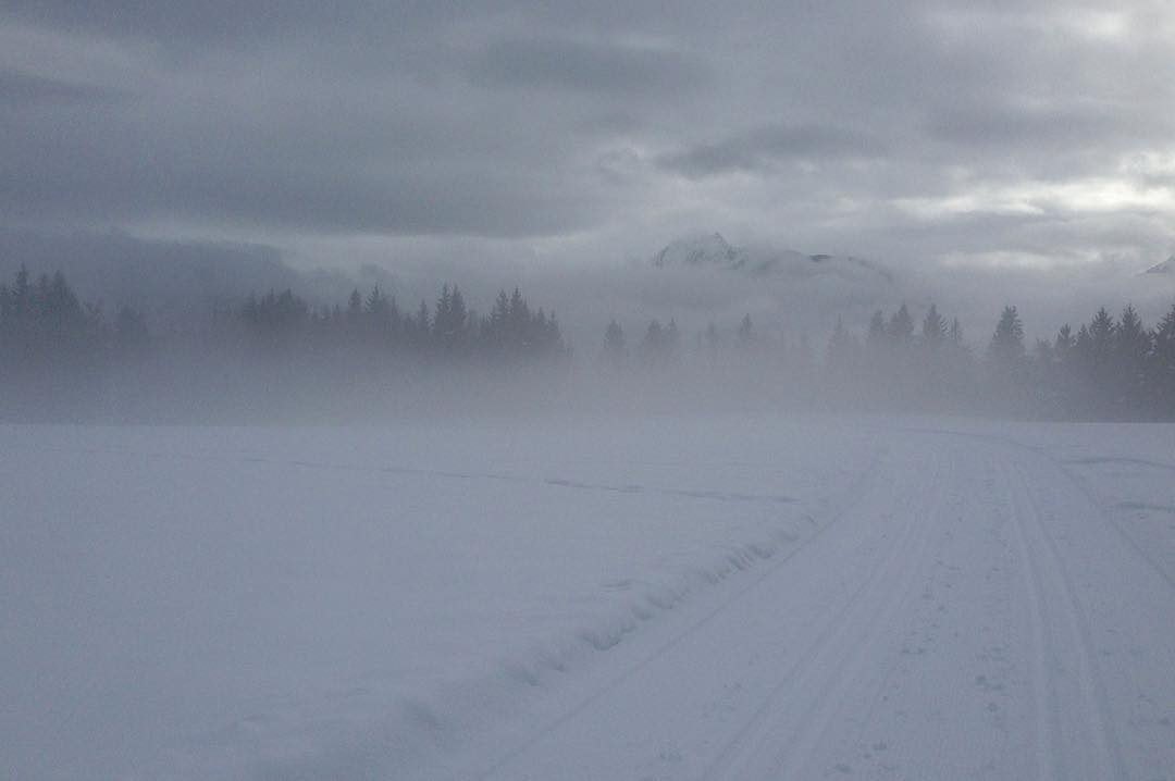 cross-country ski-tracks
